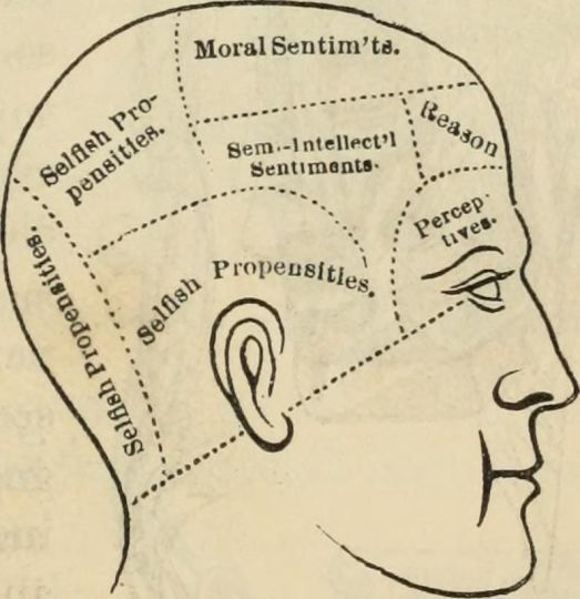 Phrenology-signs of character