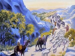Shepherds Life Style
